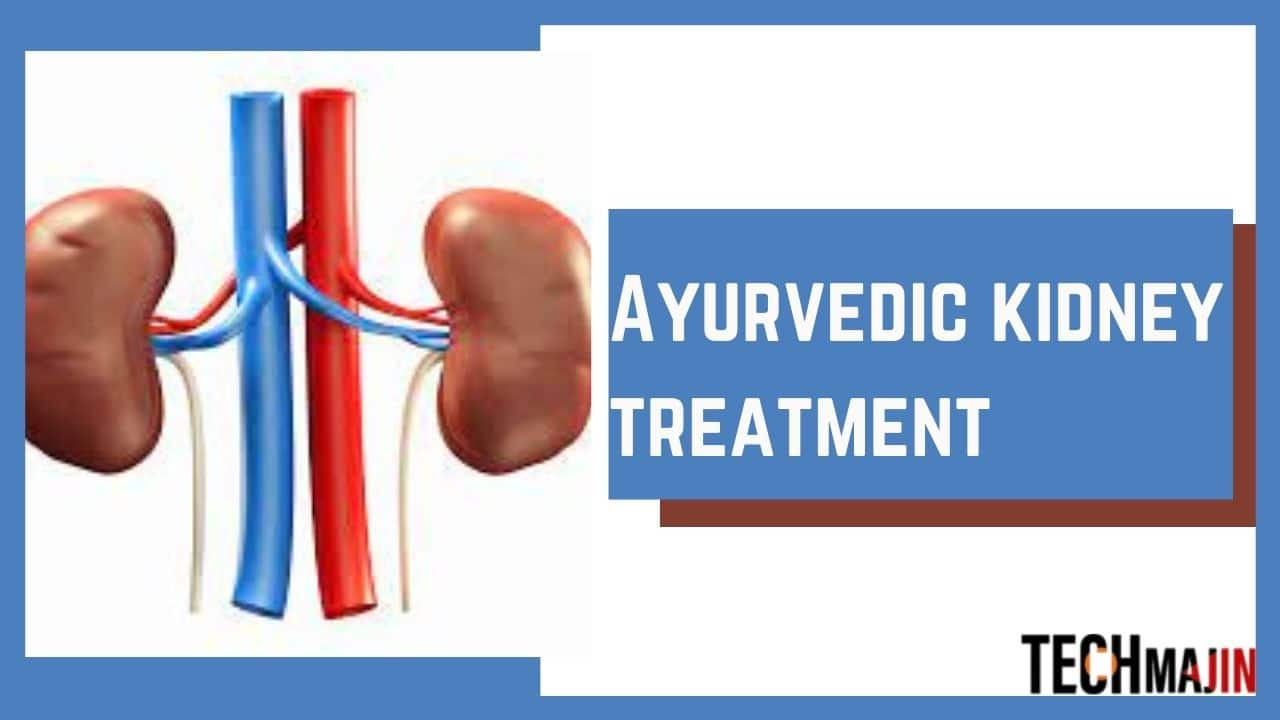 How to Keep Your Kidneys Healthy Through Ayurvedic Kidney Treatment?